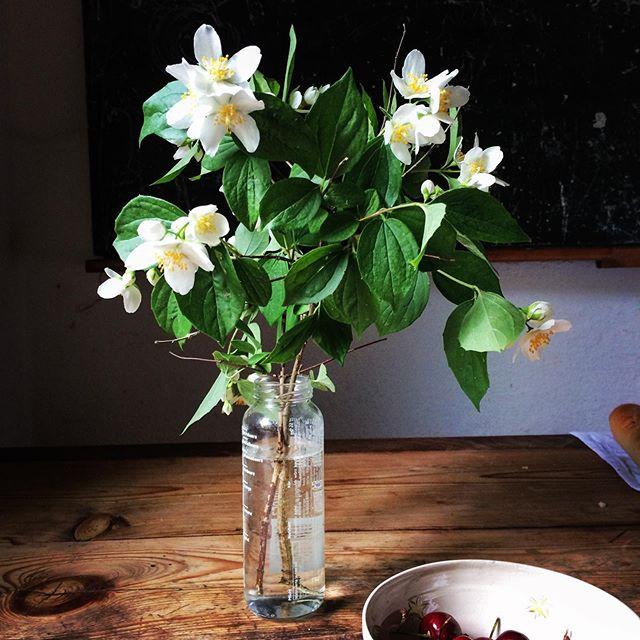 die guten Dinge Blog - Freitagsblumen, einfach Leben