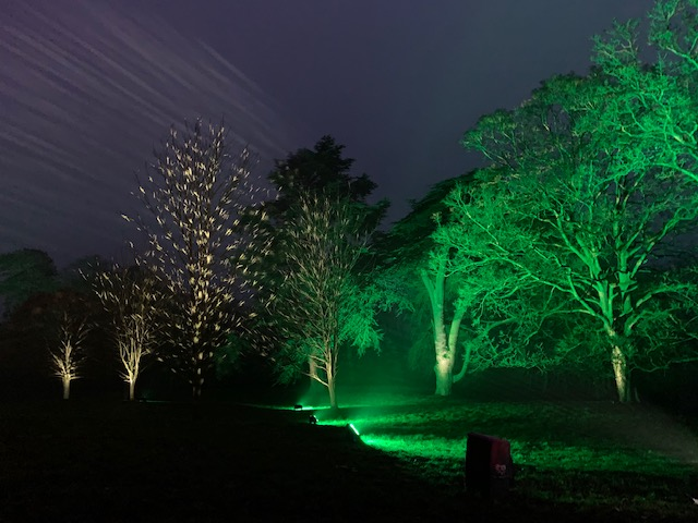 Christmas, Waddesdon Manor, Christmas at Waddesdon, Light Trail, Woodland Walk,