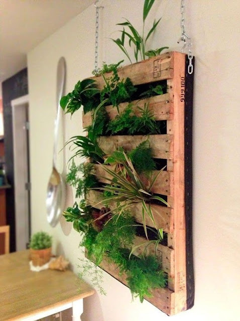 Benefits And Advantages of Vertical Gardens 2