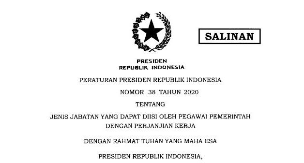 Kriteria Jabatan Yang Bisa Diisi PPPK Sesuai Perpres Nomor 38 Tahun 2020, Banyak Honorer Kecewa