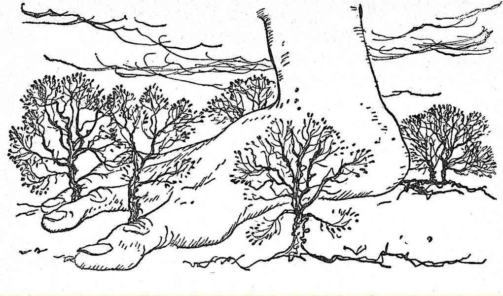 an early Arthur Rackham illustration of a giant's foot, 1851?