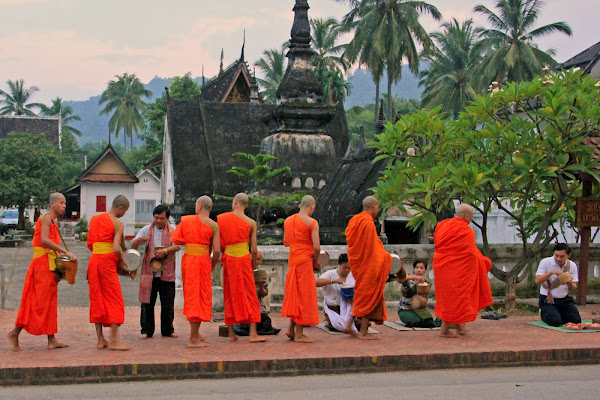 Alms Ceremony - Luang Prabang