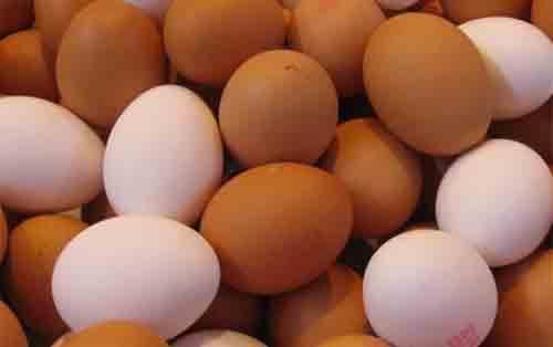 Telur Ayam Kampung Dan Negeri.  Sumber Gambar dari Intisari Grid ID