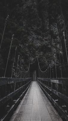 بريدج كوبرى وسط الغابات