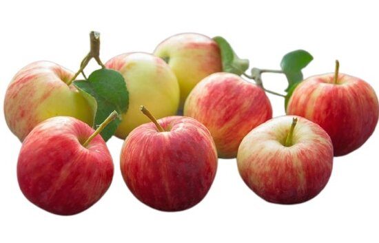 Why apples are important for our health