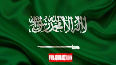 أخبار السعودية مشروع جزيرة المملكة غير مرخص ومخالف للأنظمة السعودية