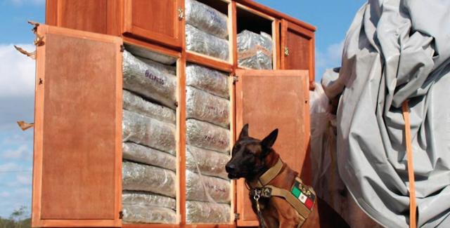 SSP asegura droga que transportaban elementos de la Guardia Nacional Nacional