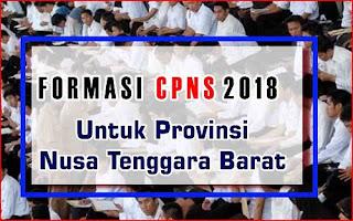 Formasi CPNS 2018 Provinsi Nusa Tenggara Barat