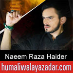 https://humaliwalaazadar.blogspot.com/2019/08/naeem-raza-haider-nohay-2020.html