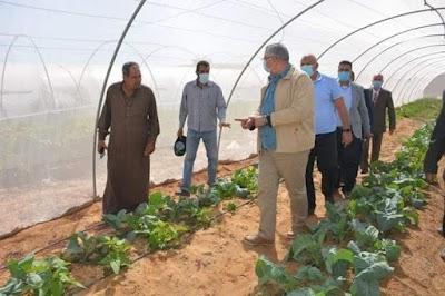 وزيرا الزراعة والري ومحافظ الوادي الجديد يتفقدون بعض المشروعات الزراعية وتحديث الري بالمحافظة