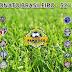 Resumo 32° rodada do Campeonato Brasileiro