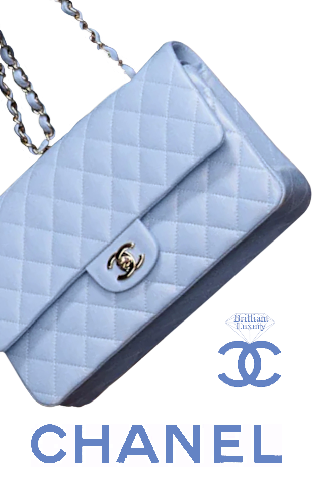 Chanel Crosière 2020 Baby Blue Flap Bag #brilliantluxury