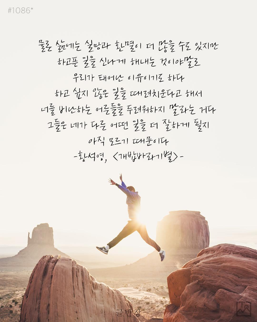 우리가 태어난 이유 - 황석영, <개밥바라기별>