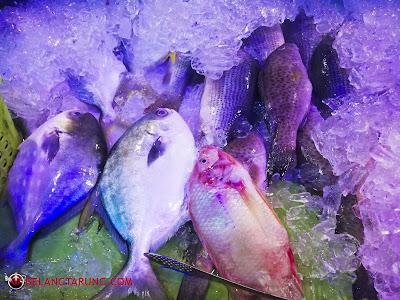 Ikan Ikan Seafood