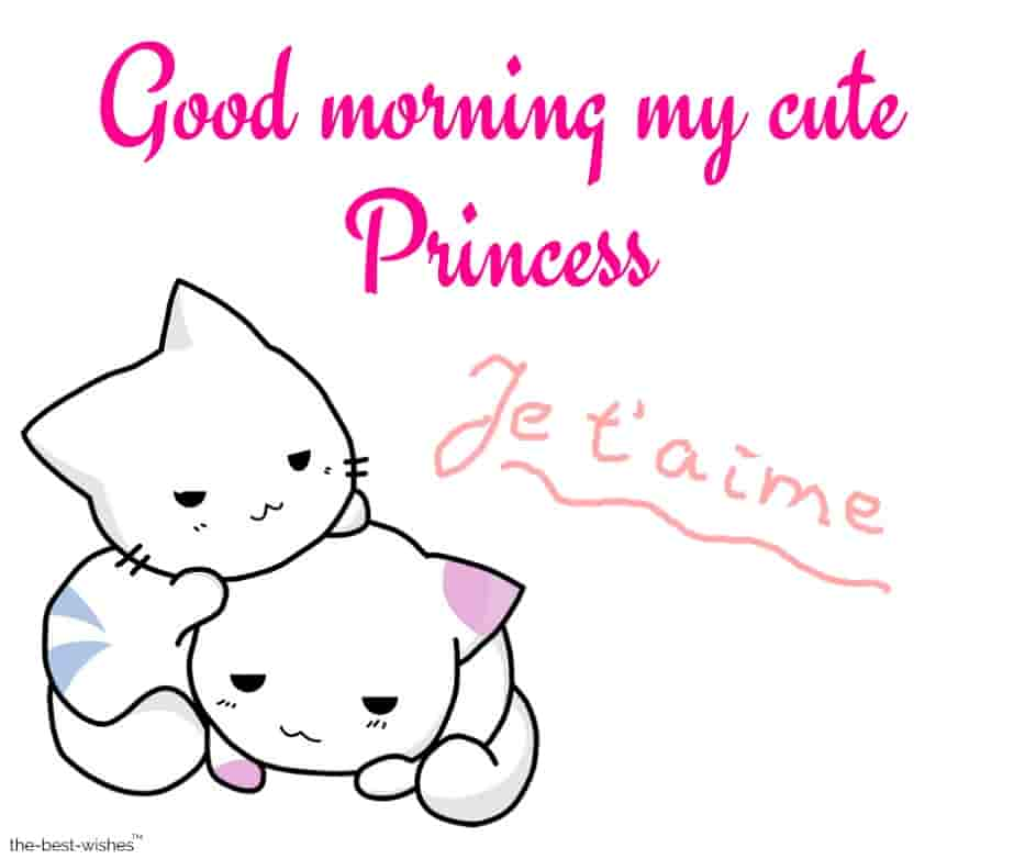 good morning my cute princess je t aime