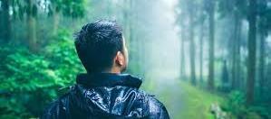 Terapi Hutan (Forest Therapy) dalam Catatan Literatur