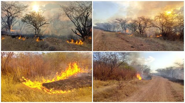 Incêndio atinge área de vegetação na zona rural da região metropolitana de Patos