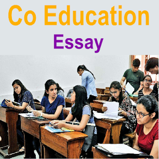 Learn Online Here Easy English Essay On Co Education System