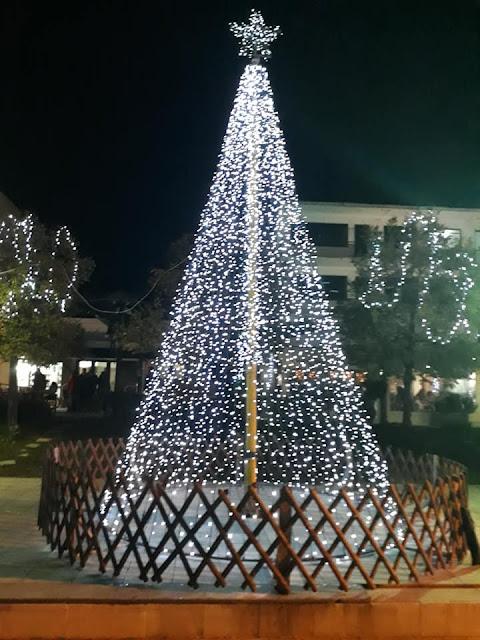 Ήγουμενίτσα: Φωτίστηκε το Χριστουγεννιάτικο δέντρο στην πλατεία Δημαρχείου Ηγουμενίτσας