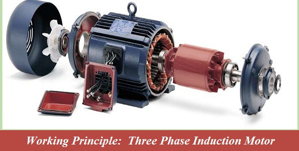 Working Principal of Three Phase Induction Motor