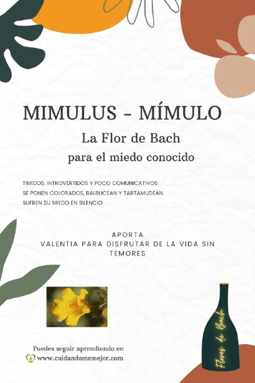 características de la Flor de Bach mimulus