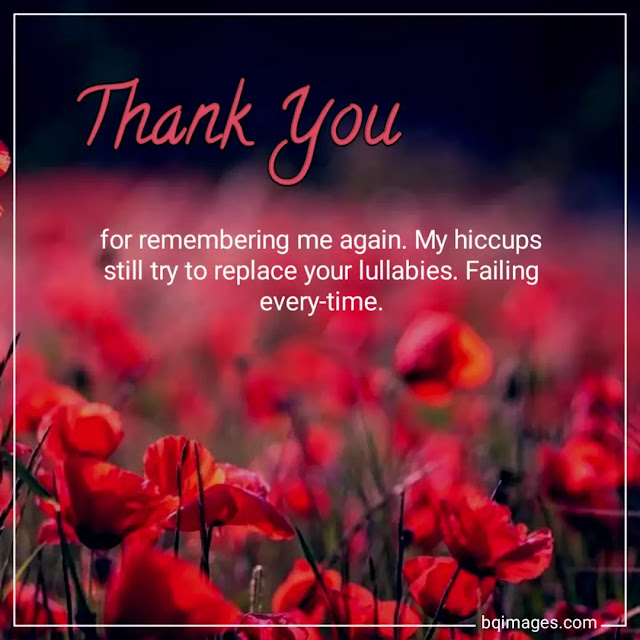 thank you with quotes