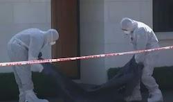 Αποτροπιασμό προκαλεί η είδηση ότι τρία μικρά κοριτσάκια στην Νέα Ζηλανδία βρήκαν φρικτό θάνατο, πιθανότατα από τα χέρια της ίδιας τους της ...