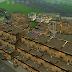 Favela pequena com base