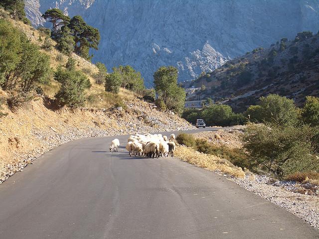 Cretan roads