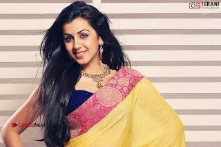 Actress Nikki Galrani Portfolio Gallery 0012