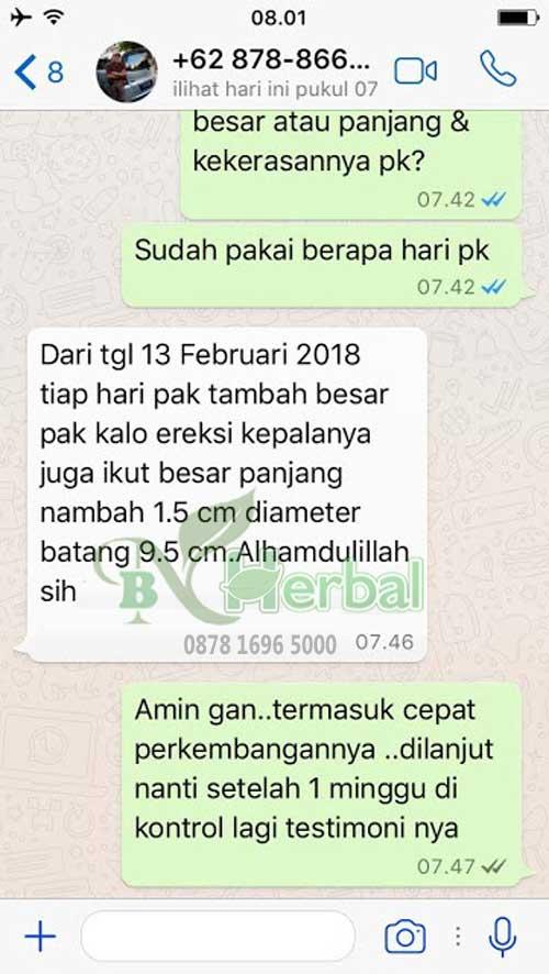 Testimoni minyak lintah Kalimantan minyak zakar alam 6