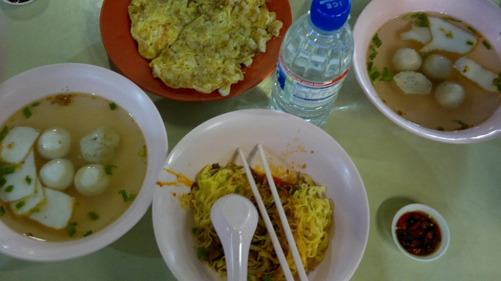 Singapore Turtle Not Eating Food