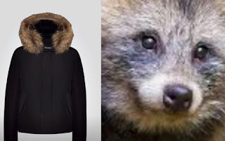 cappotti con collo di pelliccia