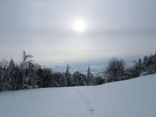 Stok opadający w kierunku przełęczy Snozka.