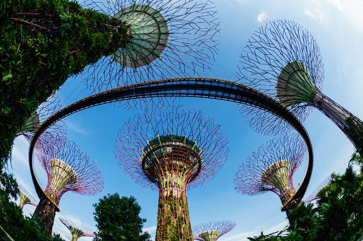 Top places to visit in Singapore - Tempat harus kamu kunjungi di Singapura