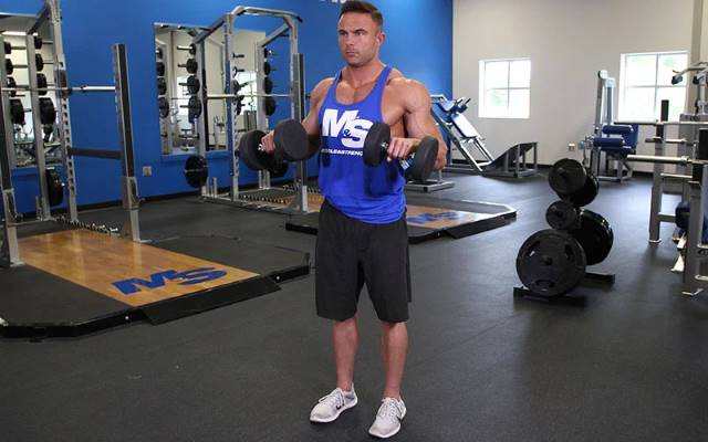 Dumbbell Exercises for Bicep