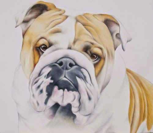 English Bulldog Pet Portrait Oil on Canvas