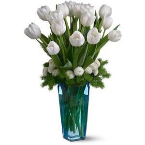 Bunga Tulip Putih sebagai Permintaan Maaf yang Tulus