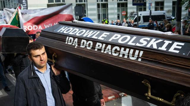 Protestujący niosą trumnę z napisem Hodowle polskie do piachu