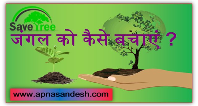 जंगल को कैसे बचाएं - How to save the forest