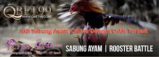 Judi Sabung Ayam Online Dengan Odds Terbaik