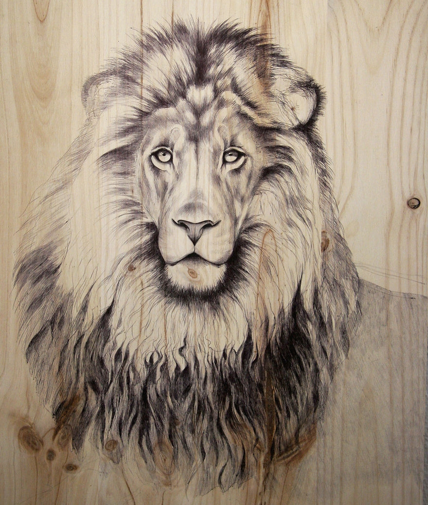07-Lion-pen-00-Martina-Billi-Recycled-Wooden-Planks-Used-to-Draw-Animals-www-designstack-co