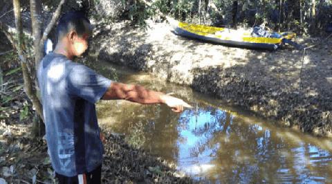 Alqur'an Dibuang di Sungai, di Kalimantan Utara