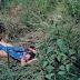 20 anos depois. Quem matou Luziene?