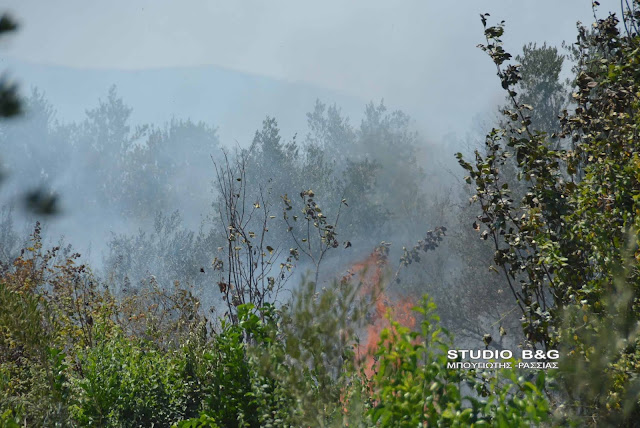 Πυρκαγιά στη Νέα Κίο κοντά σε καταυλισμό Ρομά