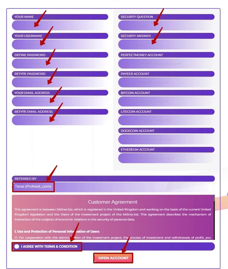 Регистрация в Bitliner 2