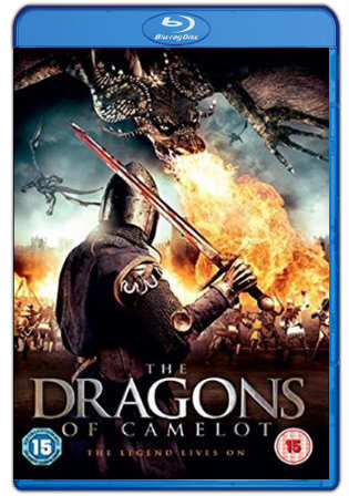 The Dragons Of Camelot 2014 BluRay 250MB Hindi Dual Audio 480p