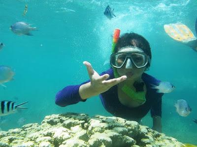 tour laut snorkeling di karimunjawa
