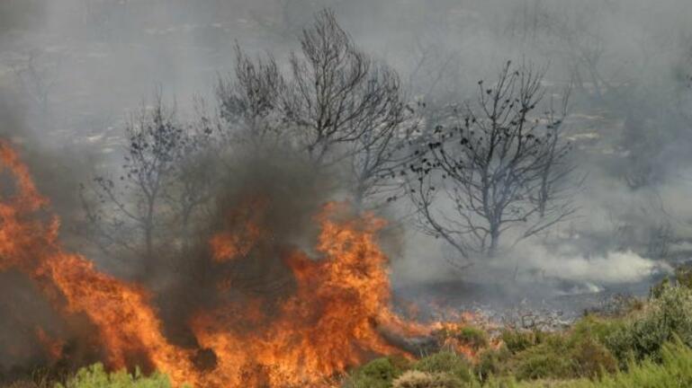 Πυροσβεστική: 53 δασικές φωτιές το τελευταίο 24ωρο στην Ελλάδα