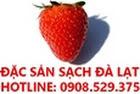 Chuyên cung cấp sỉ và lẻ đặc sản sạch Đà Lạt-Hotline:0908.529.375